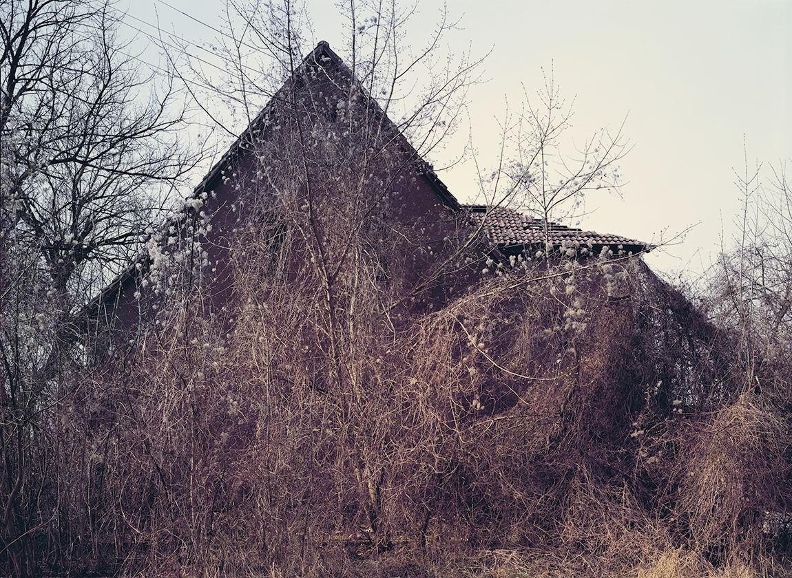 © Andreas Mühe, das Haus Golzow, 2009 (Ausschnitt)